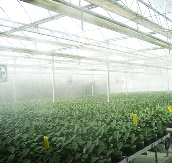 misting cooling system over agriculture crops